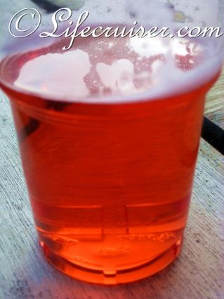 Campari Drink at the farm, Fårö Island, Gotland, Sweden, Photo Copyright Lifecruiser.com