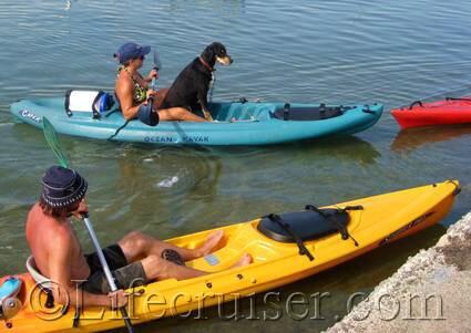 Dog on vacation - kayaking close up, France