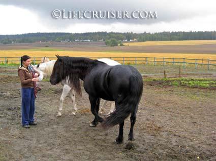 Lifecruiser photo Kari and her horse