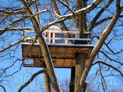 Unusual Hotel Woodpecker Treehouse from the side, Västerås, Sweden, Copyright Lifecruiser.com