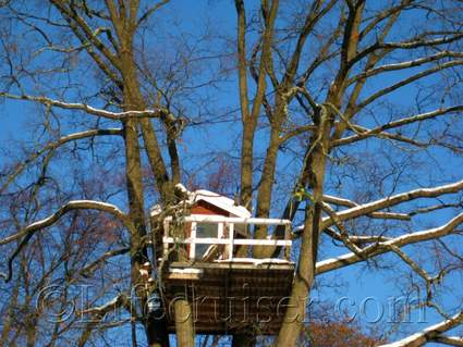 Unusual Hotel Woodpecker Treehouse, Västerås, Sweden, Copyright Lifecruiser.com
