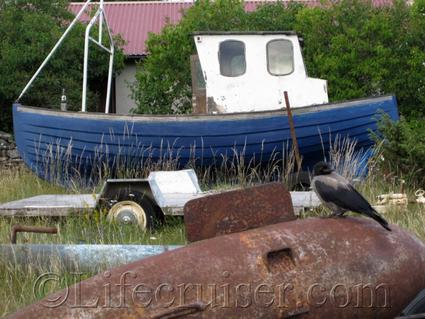 faro-boat-and-crow, Gotland, Sweden