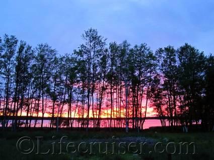 Sunset Eke swamp, Fårö, Gotland, Sweden