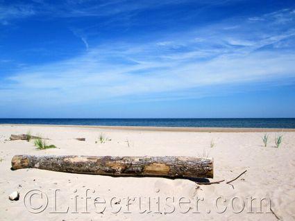 Norsta Aurar Beach Log, Gotland, Sweden