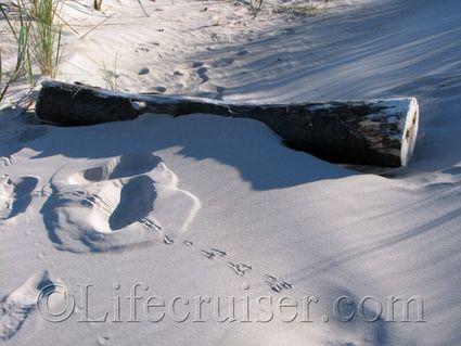 faro-sand-snow-beach