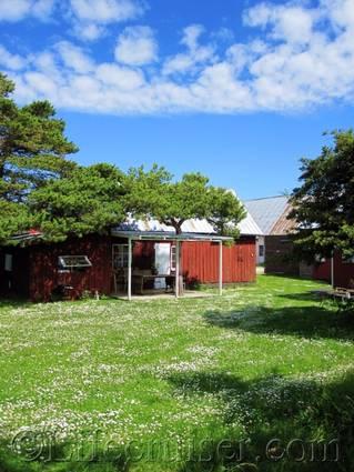 Faro farm stay 2011