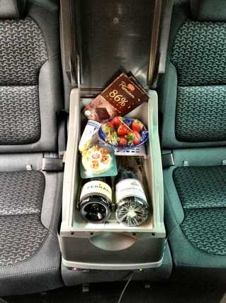 Skoda coolbox 15L in Yeti backseat, Lifecruiser
