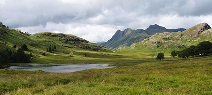 UK, Lakes District: Blea Tarn